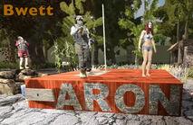 Aaronpole 2