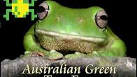 Frogger thumbnail