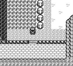 Pokémon Rosso Percorso 22 (Kanto)