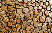 Wood-log-backround-5551745