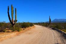Desert-roads
