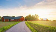 Rural-scene-in-sweden-picture-id170006998-1080x627