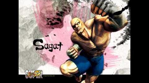 Super Street Fighter 4 Sagat Theme Soundtrack HD
