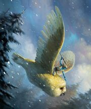 Jakei Owl Raider