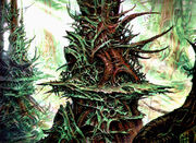 Forest (MIR)