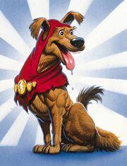 Champs the Wonder Dog