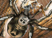 Giant Spider (6ED)
