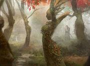 Dryad Arbor (FtV)