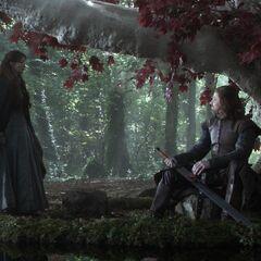 Eddard reinigt Eis im Götterhain.