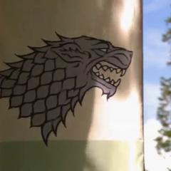 Estandarte Stark – variante com o lobo gigante cinza e o fundo branco acima de um escudo verde.
