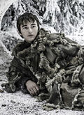 Bran winds of winter finale s6