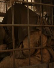 Season one Jaqen
