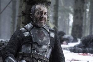 510 Stannis