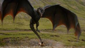 Drogon Peasant