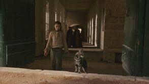 Arya chasing cat Episode 105