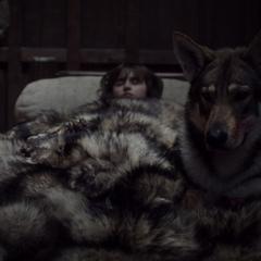 Lato ratuje Brana.