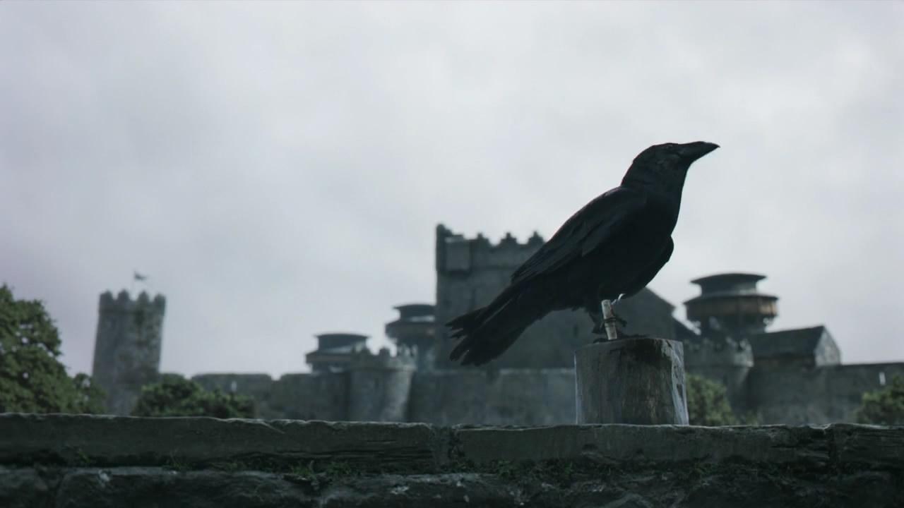 Afbeeldingsresultaat voor game of thrones raven post