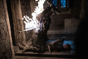 Arya Corpse S8 EP3