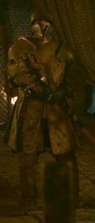 Renly's Kingsguard 1