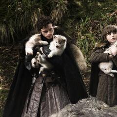 Robb i Bran z odnalezionymi <a href=