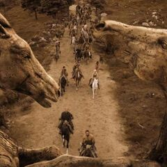 Das Pferdetor (Staffel 1)