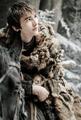 Bran Stark 6x10.png