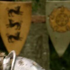 Um escudo com o símbolo da <strong class=