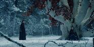 Санса Старк у чар-древа