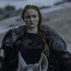 Sansa in Staffel 6