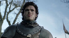 Robb Stark after the battle