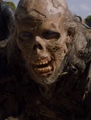 Captured Wight.png