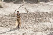 Nymeria-Sand-498