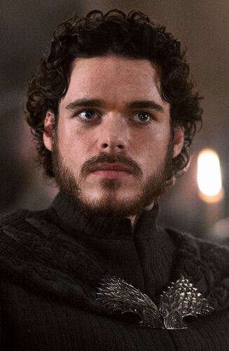 robb stark game of thrones wiki fandom powered by wikia. Black Bedroom Furniture Sets. Home Design Ideas