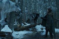 Арья, Нимерия и волки 7x02