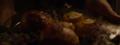 Lemoncake lysaarryn.png