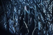 Game-of-thrones-season-4-finale-tree-man