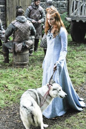 102 Sansa Lady