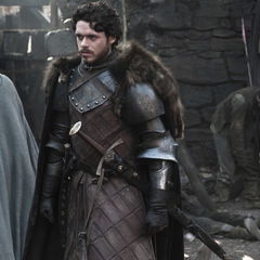 Promotional image of Robb in