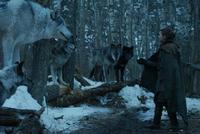 Arya e Nymeria - Nascida da Tormenta