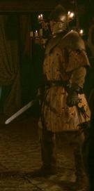 Renly's Kingsguard 2