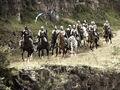 Vale knights.jpg