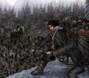 Batalha de Castelo Negro