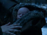 Bolton (son of Roose)