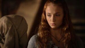 104 Sansa und Mordane