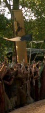 Baratheon tourney