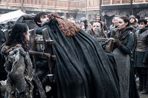 703 Sansa Bran
