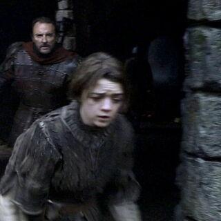 Ser Amory goni Aryę.