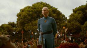 Brienne costume Purple Wedding 1