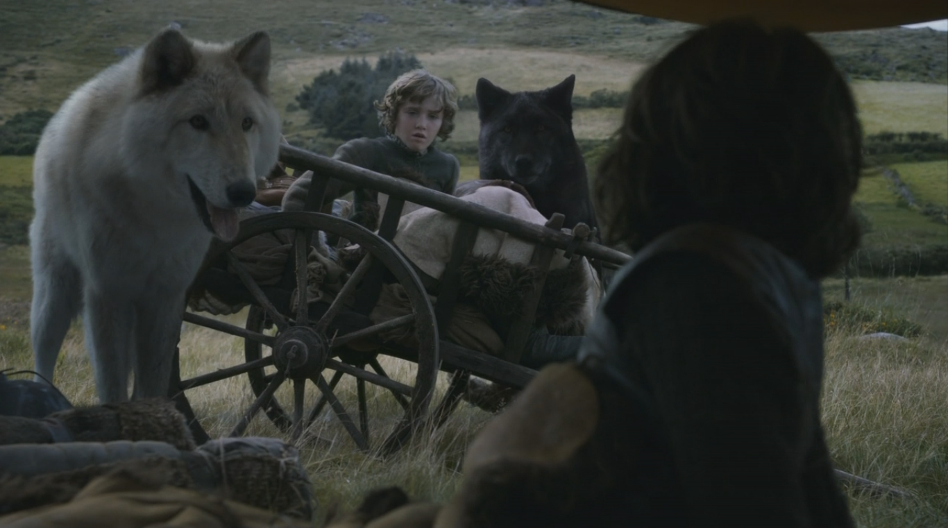Rickon Stark Game Of Thrones Wiki Fandom Powered By Wikia