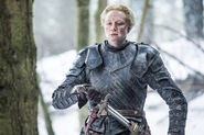 Brienne Mother's Mercy